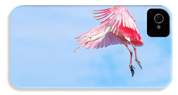 Roseate Spoonbill Final Approach IPhone 4s Case