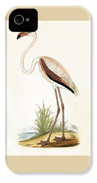 Rosy Flamingo IPhone 4s Case by English School