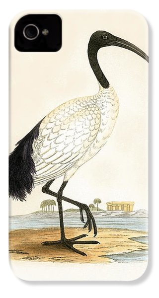 Sacred Ibis IPhone 4s Case by English School