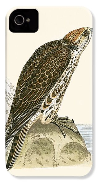 Saker Falcon IPhone 4s Case by English School