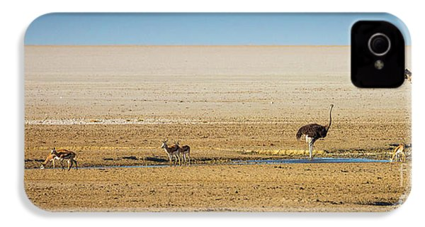 Savanna Life IPhone 4s Case by Inge Johnsson