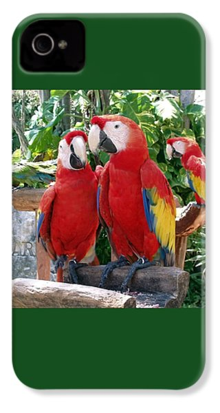 Scarlet Macaws IPhone 4s Case by Ellen Henneke