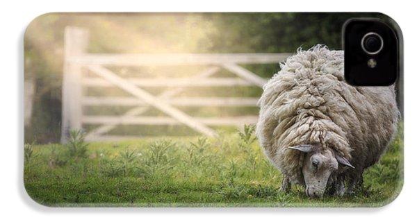 Sheep IPhone 4s Case by Joana Kruse