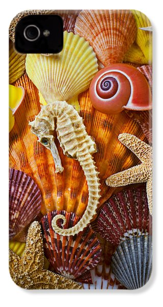 Seahorse And Assorted Sea Shells IPhone 4s Case by Garry Gay