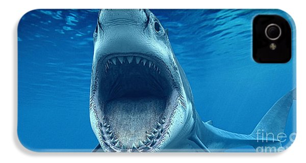 Shark Beach Collection IPhone 4s Case by Marvin Blaine