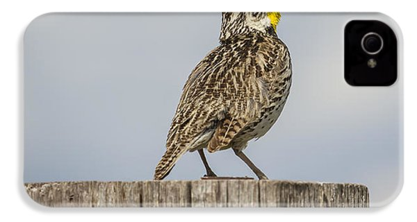 Singing A Song IPhone 4s Case by Thomas Young