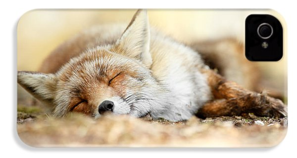 Sleeping Beauty -red Fox In Rest IPhone 4s Case