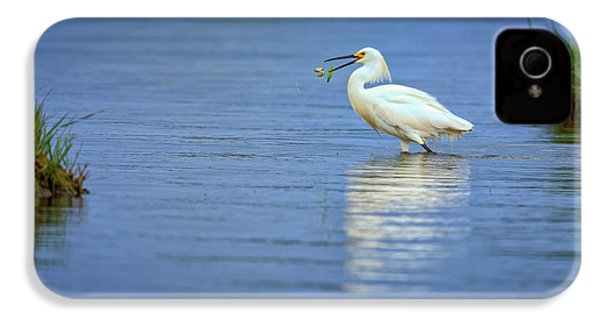 Snowy Egret At Dinner IPhone 4s Case by Rick Berk
