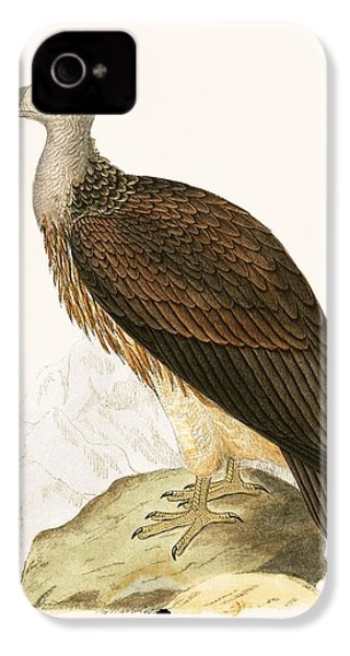 Sociable Vulture IPhone 4s Case by English School