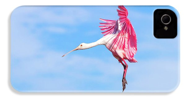 Spoonbill Ballet IPhone 4s Case by Mark Andrew Thomas
