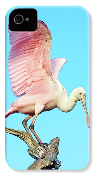 Spoonbill Flight IPhone 4s Case