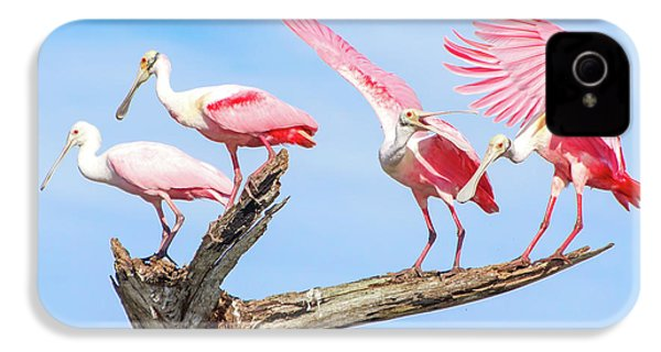 Spoonbill Party IPhone 4s Case by Mark Andrew Thomas