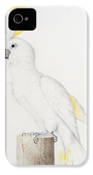 Sulphur Crested Cockatoo IPhone 4s Case by Nicolas Robert