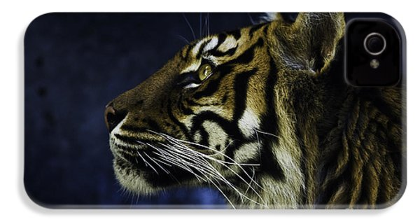 Sumatran Tiger Profile IPhone 4s Case by Avalon Fine Art Photography
