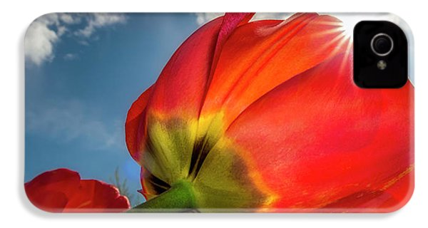 IPhone 4s Case featuring the photograph Sunbeams And Tulips by Adam Romanowicz