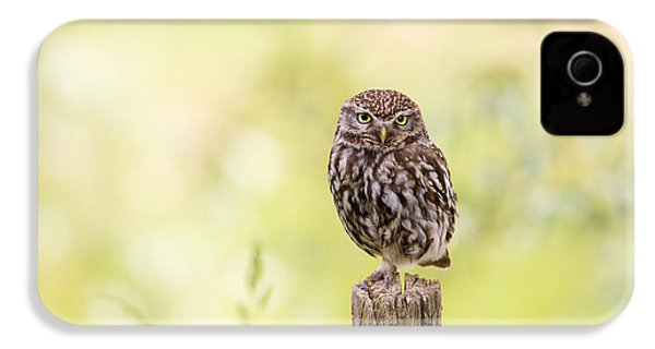 Sunken In Thoughts - Staring Little Owl IPhone 4s Case by Roeselien Raimond