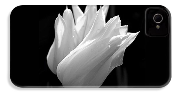 Sunlit White Tulips IPhone 4s Case by Rona Black