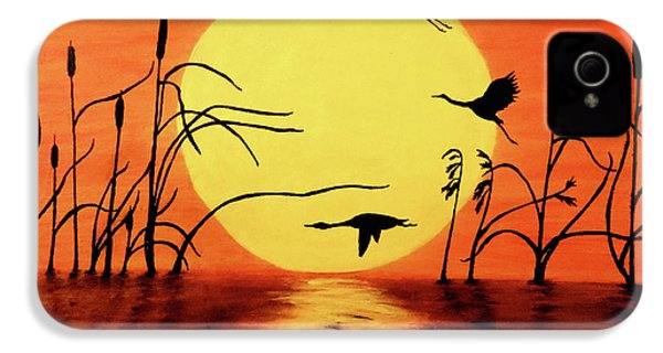 Sunset Geese IPhone 4s Case by Teresa Wing