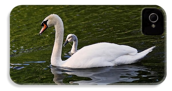 Swan Mother With Cygnet IPhone 4s Case