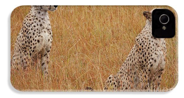 The Cheetahs IPhone 4s Case by Nichola Denny