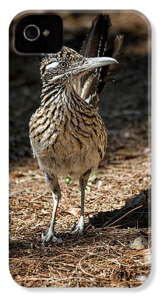 The Greater Roadrunner Walk  IPhone 4s Case by Saija Lehtonen