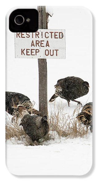 The Turkey Patrol IPhone 4s Case by Mike Dawson