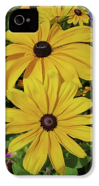 IPhone 4s Case featuring the photograph Thirteen by David Chandler