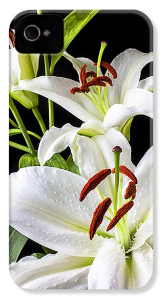 Three White Lilies IPhone 4s Case by Garry Gay