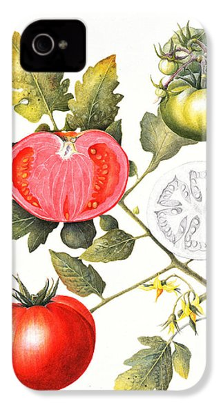 Tomatoes IPhone 4s Case by Margaret Ann Eden