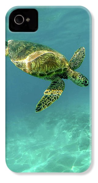 Tortoise IPhone 4s Case by Happy Home Artistry