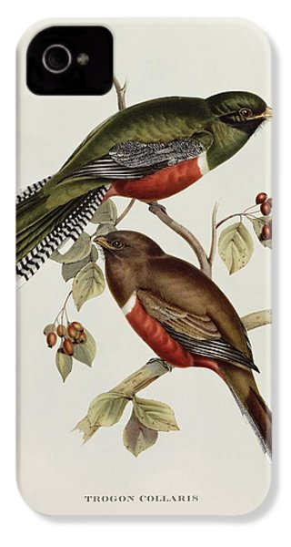 Trogon Collaris IPhone 4s Case by John Gould