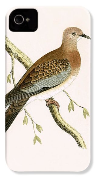 Turtle Dove IPhone 4s Case by English School
