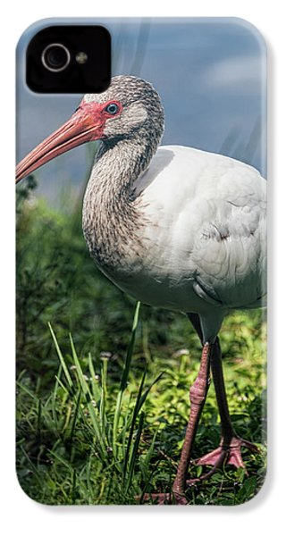 Walk On The Wild Side  IPhone 4s Case by Saija Lehtonen