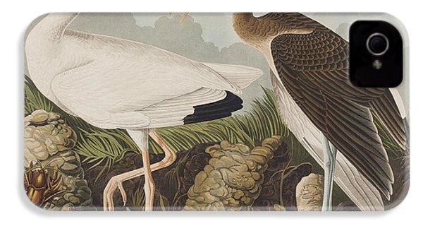 White Ibis IPhone 4s Case by John James Audubon