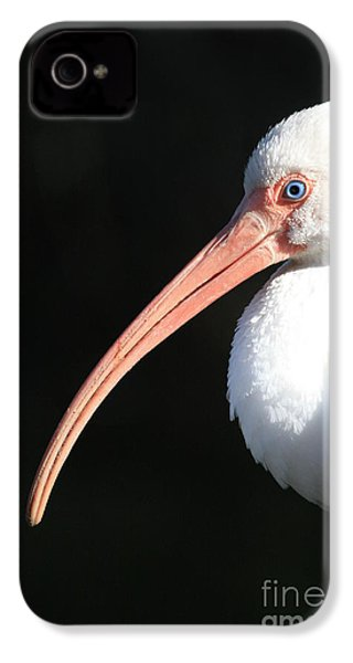 White Ibis Profile IPhone 4s Case by Carol Groenen