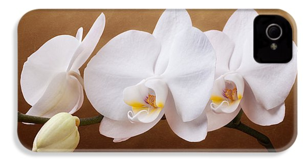 White Orchid Flowers And Bud IPhone 4s Case by Tom Mc Nemar