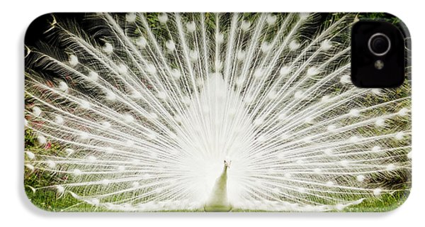 White Peacock  IPhone 4s Case by Dustin K Ryan