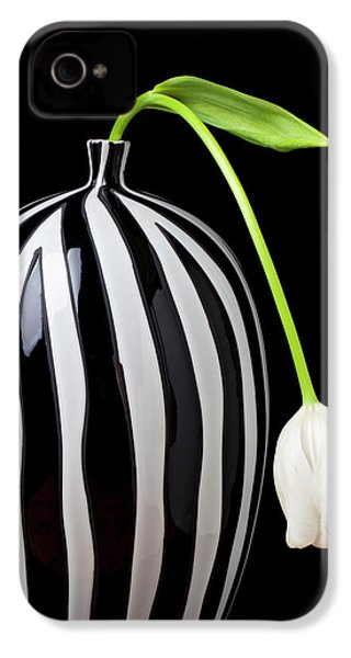 White Tulip In Striped Vase IPhone 4s Case by Garry Gay