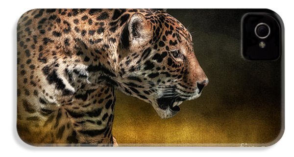 Who Goes There IPhone 4s Case by Lois Bryan