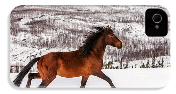 Wild Horse IPhone 4s Case by Todd Klassy