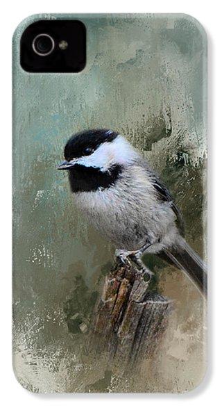 Winter Chickadee IPhone 4s Case by Jai Johnson