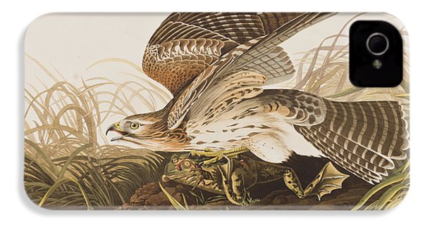 Winter Hawk IPhone 4s Case by John James Audubon