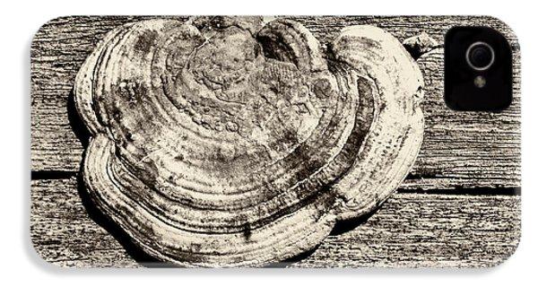 IPhone 4s Case featuring the photograph Wood Decay Fungi, Nagzira, 2011 by Hitendra SINKAR
