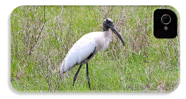 Wood Stork In The Marsh IPhone 4s Case by Carol Groenen