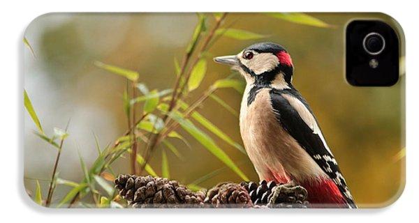 Woodpecker 3 IPhone 4s Case
