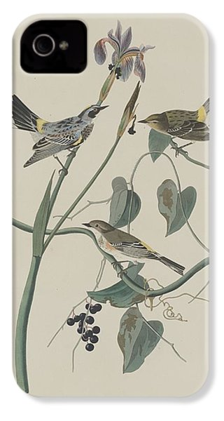 Yellow-crown Warbler IPhone 4s Case by Dreyer Wildlife Print Collections