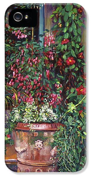 Pot Of Fuschia Flowers IPhone 5 Case by David Lloyd Glover