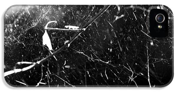 Spidernet IPhone 5 Case