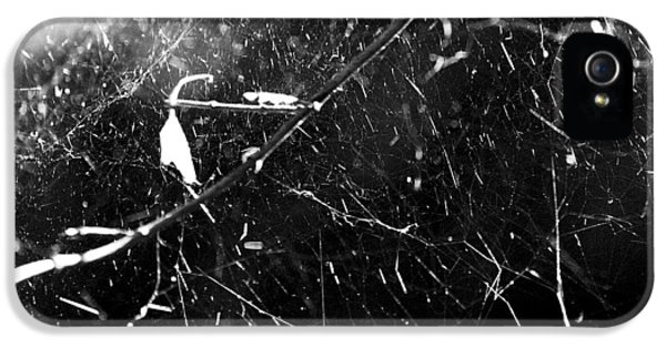 Spidernet IPhone 5 Case by Yulia Kazansky