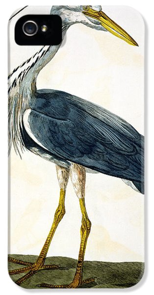 The Heron  IPhone 5 Case by Peter Paillou